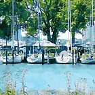 Boats At Belle Isle by perkinsdesigns