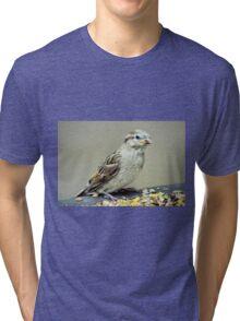 Sparrow Tri-blend T-Shirt