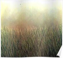 Landscape of Dreams Poster
