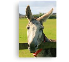 What's Going On 'Ear Then? Canvas Print