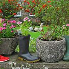 Old Boots, New Shoots by RedHillDigital