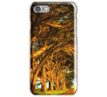 Cypress Tunnel Sunset Glow iPhone Case/Skin