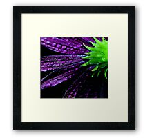 Purplicious Framed Print