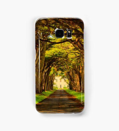 Cypress Golden Glow Samsung Galaxy Case/Skin
