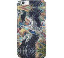 Storks at Sunrise iPhone Case/Skin