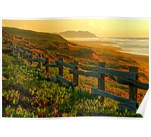Point Reyes Golden Glow Poster