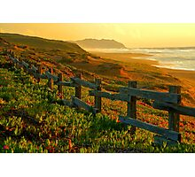 Point Reyes Golden Glow Photographic Print
