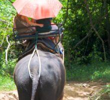 Elephant trekking through jungle Sticker