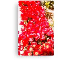 Red my color, my blood. Canvas Print