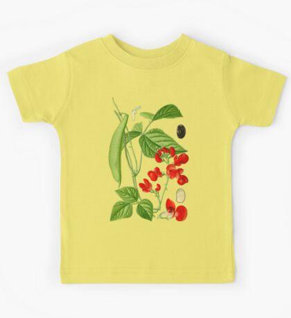 bean Kids Clothes