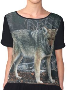 Hungry Like The Wolf Chiffon Top