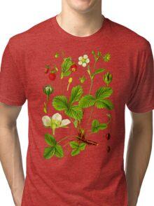 alpine strawberry Tri-blend T-Shirt