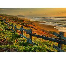 Point Reyes Golden Coast Photographic Print