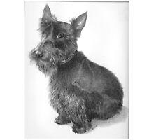 Scottie Dog by Redbarron