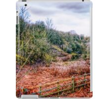 Down by the Stream HDR iPad Case/Skin