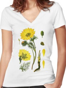 spring adonis Women's Fitted V-Neck T-Shirt