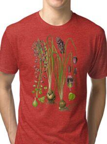 hyacinthe Tri-blend T-Shirt