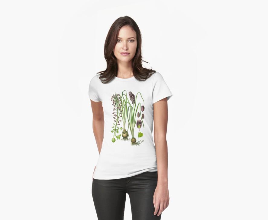 hyacinthe by Alex Magnus
