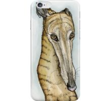 Absolutely iPhone Case/Skin