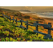 Marin County Gold Photographic Print