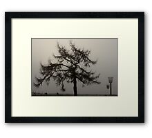 Nature - Foggy outlook Framed Print
