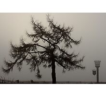 Nature - Foggy outlook Photographic Print