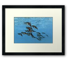 Squid Squadron Framed Print