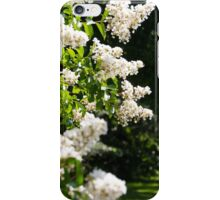 Floral 15 iPhone Case/Skin