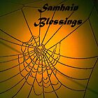 Samhain blessings,  Spider web photo  by Aine MacAodha