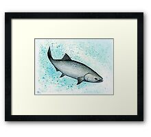 Salmon Splash ~ Watercolor Framed Print