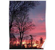 Winter Morning Sunrise  Poster