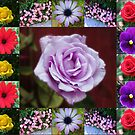 Floral Collage Featuring Roses by BlueMoonRose