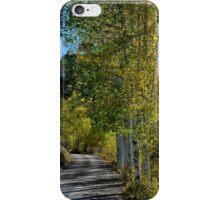 Golden aspens iPhone Case/Skin