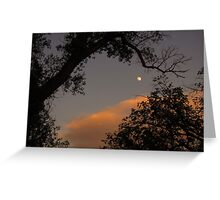 """Moon beneath a """"dragon's tail"""" branch Greeting Card"""