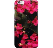 Blushing Spring iPhone Case/Skin