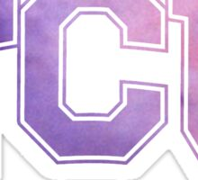 Texas Christian University/TCU  Sticker