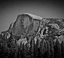 Half Dome in black and white by Tracy Freese