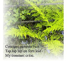 Haiku summer, fern. Photographic Print