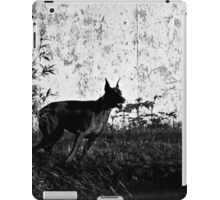 Intimidating Urban Pincher iPad Case/Skin