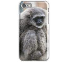 Silvery Gibbon iPhone Case/Skin