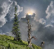 4268 by peter holme III