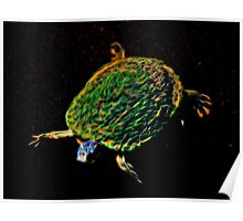 Glowing Turtle  Poster