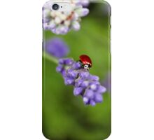 Lavender Lover iPhone Case/Skin
