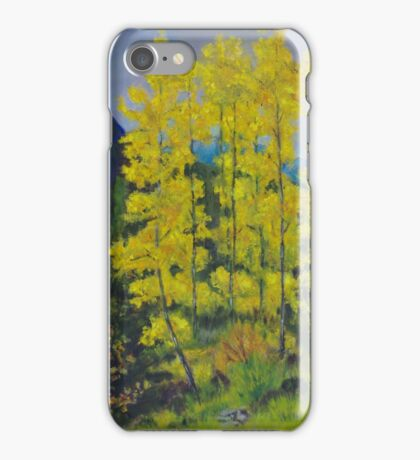 Yankee Boy Basin iPhone Case/Skin