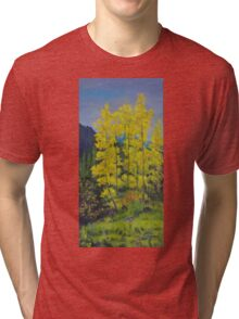 Yankee Boy Basin Tri-blend T-Shirt