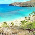 Hanauma Bay, Oahu, Hawaii by Adam Kuehl