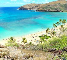Hanauma Bay, Oahu, Hawaii by Adam Kuehl