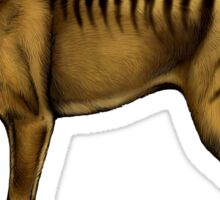 Thylacine Sticker