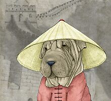 Shar Pei on The Great Wall by barruf