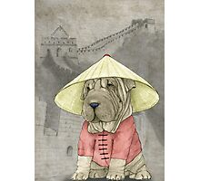 Shar Pei on The Great Wall Photographic Print